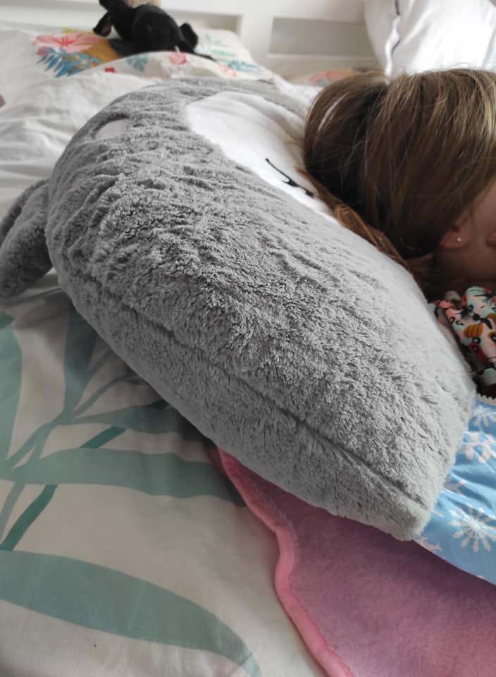 Un oreiller 2 en 1 Best of Toys